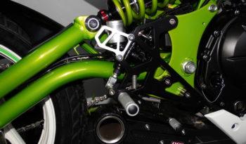 X6 Custom Scrambler voll
