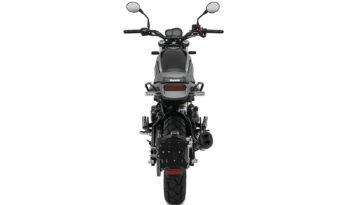 Benelli Leoncino 500 Trail – schwarz voll